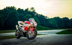 Picture road, trees, sunset, motorcycle, white, white, yamaha, bike, Yamaha, yzf-r1