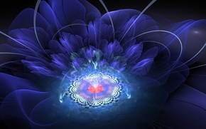 Picture flower, rays, light, abstraction, graphics, fractal