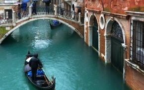 Picture autumn, people, rain, street, building, home, Italy, Venice, channel, umbrellas, the bridge, rain, Italy, bridge, …