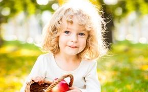 Picture autumn, smile, Park, basket, apples, curls, child