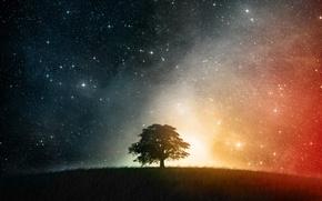 Picture stars, night, Tree, hill