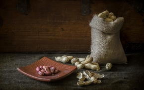 Picture macro, background, nuts