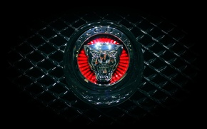 Picture Jaguar, Machine, Grille, Jaguar, Emblem, Logo, Radiator
