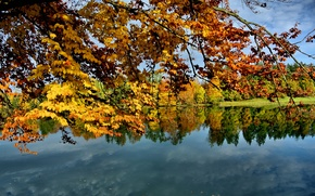 Picture autumn, the sky, leaves, trees, lake, branch
