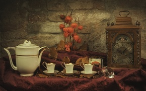 Wallpaper coffee pot, still life, watch, Cup, physalis, dishes
