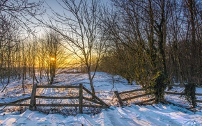 Picture winter, the sun, snow, trees, sunset, the fence