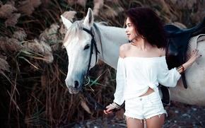 Picture girl, horse, shorts, Alia Lando, Ivan Gorokhov