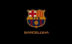 Picture Barcelona, Leopard, Barcelona, Barca