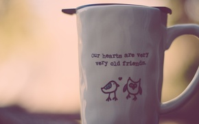 Picture text, the inscription, owl, mug, Cup, birds
