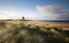 Picture sand, sea, grass, shore, England, UK, lifeline