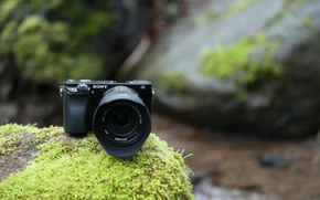 Picture high-tech, photography, nature, camera, rocks, leather, stream, vegetation, technology, Wi-Fi, Sony a6000, digital camera, Sony …