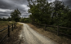 Picture road, the fence, the evening