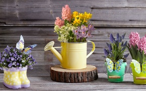 Wallpaper decor, Muscari, buckets, butterfly, hyacinths, lake, daffodils, bouquets, crocuses, flowers