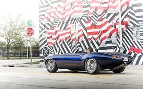 Picture wall, graffiti, Jaguar, wall, Eagle, sports car, sportcar, SPEEDSTER, E-TYPE