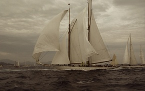 Picture Sea, Yacht, The wind, Sails