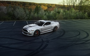 Picture Mustang, Ford, 800, Chip, 2015, Foose &, MMD Unveil, + HP