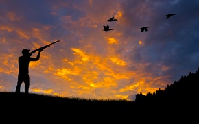 Picture forest, nature, duck, silhouette, shooting, hunting, the gun, rifle, rifle, wallpaper., aiming, beautiful background, beautiful …