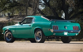 Picture trees, Mustang, Ford, Ford, Mustang, muscle car, classic, rear view, 1970, Boss, Muscle car, 429, …