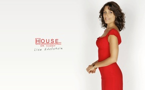 Wallpaper Dr. house, the series, Lisa Cuddy, house m.d.