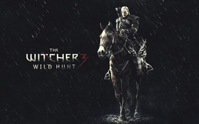 Picture Game, The Witcher, The Witcher 3: Wild Hunt, FuriousGFX