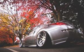 Picture autumn, nissan, 350z, Nissan