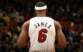 Wallpaper basketball, James, Lebron James