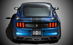 Picture Mustang, Ford, Shelby, Muscle, Car, Rear, 2015, GT350R