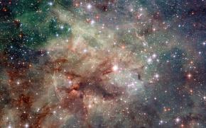 Picture space, stars, the tarantula nebula