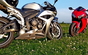 Picture motorcycles, Moto, honda, motorcycle, cbr600rr