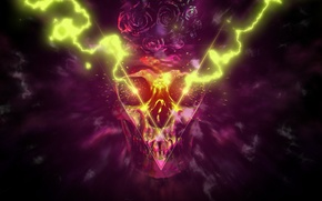 Picture skull, rage, Abstraction
