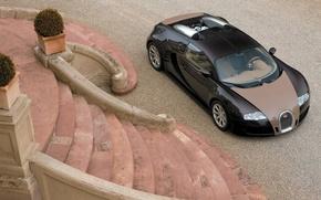 Picture Bugatti, Veyron, Porch