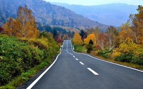 Picture road, autumn, forest, trees, mountains, highway