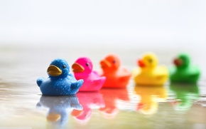 Wallpaper rainbow, colorful, reflection, toys, duck, water, orange, blue, blue, yellow, river, green, mood, pink, water, ...