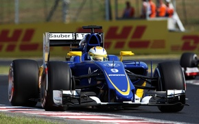 Picture Formula 1, Clean, The front, C34, Marcus Ericsson