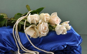 Picture flower, flowers, roses, bouquet, silk, pearl, beads, white, silk, pearls