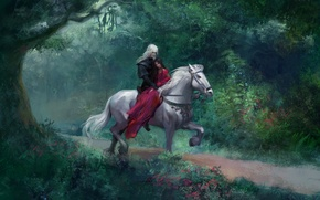 Picture forest, girl, tree, horse, art, guy