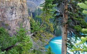 Wallpaper trees, lake, Canada, mountains
