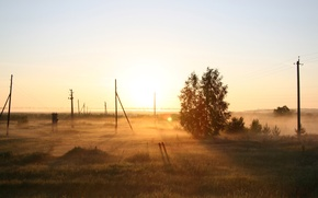 Wallpaper Russia, morning, tree, field, fog, dawn, Nature
