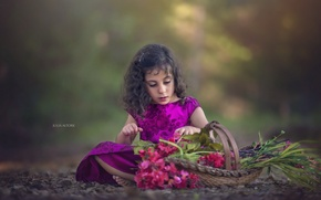 Picture flowers, basket, girl
