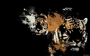 Picture animals, predators, art, color, black background, tigers