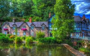 Wallpaper Lymm, the reeds, England, treatment, the bushes, trees, house, greens, pond