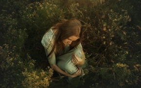 Wallpaper grass, girl, TJ Drysdale, Evening Light