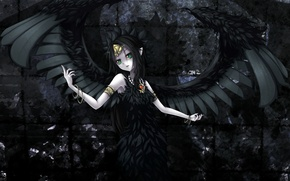 Picture darkness, despair, angel, the demon, black wings, Fallen, Fabled grimro yugioh