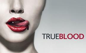 Picture blood, Vampires, True Blood, True blood