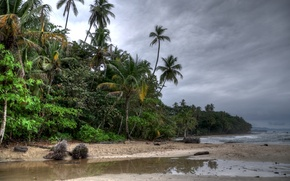 Picture beach, trees, clouds, palm trees
