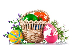 Picture eggs, Easter, white background, flowers, basket