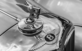Picture macro, retro, Bentley, grille, emblem