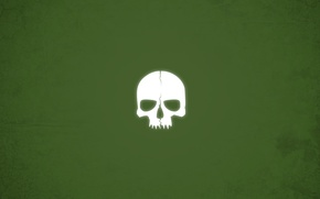 Picture skull, minimalism, green background