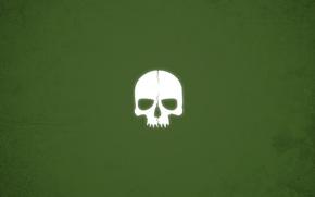 Wallpaper skull, minimalism, green background
