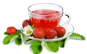 Wallpaper tea, strawberry, berry, Cup, white background, leaves, saucer, strawberry, tea
